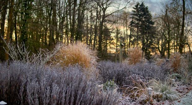 Сад by Gartendesign Homann