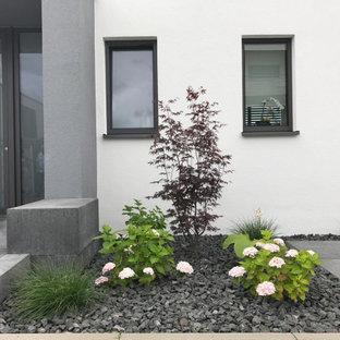 Moderner Vorgarten mit Blumenbeet in Frankfurt am Main