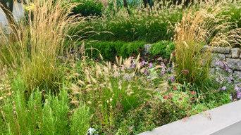 Moderner reduzierter Garten