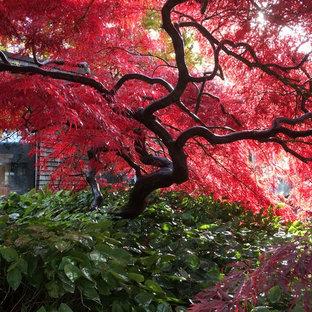 Idée de décoration pour un très grand jardin asiatique.