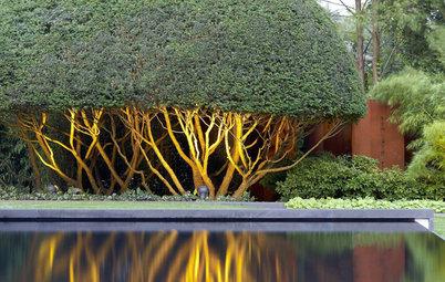 Feng Shui unter der Lupe: Der Feng-Shui-Garten