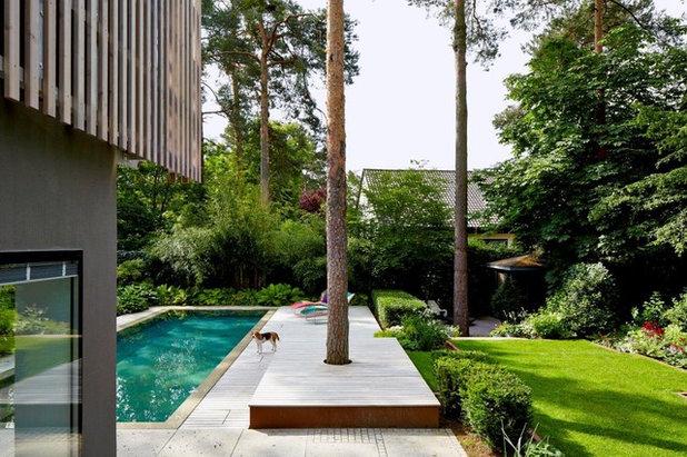 Modern Garten By Orel + Heidrich Landschaftsarchitekten