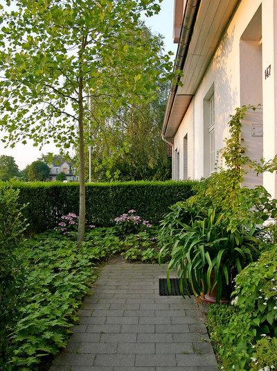 Gartenbesuch ein langer schmaler garten in krefeld modern zoniert - Schmaler garten ...
