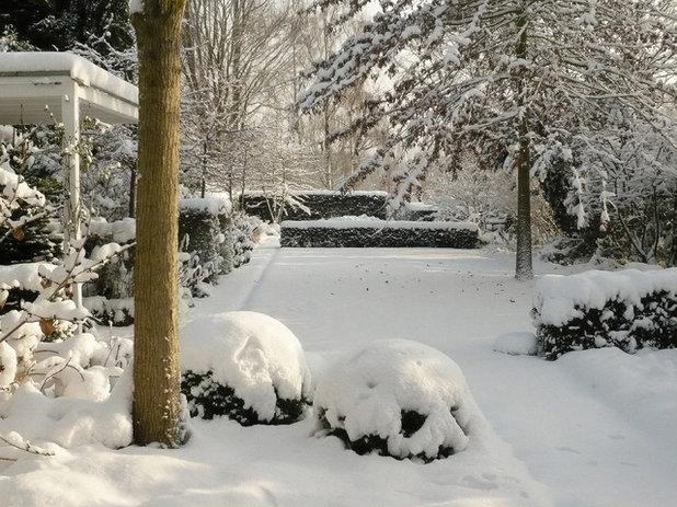 Klassisch Garten by DMSW landschaft