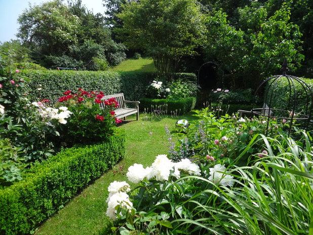 Sichtschutz Aus Pflanzen Diese 14 Gewachse Eignen Sich Als Grune Wand