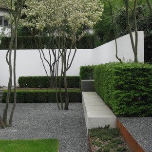 Jardin moderne Francfort : Photos et idées déco de jardins