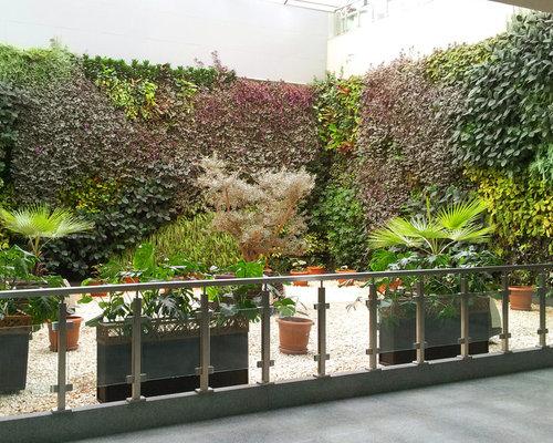 Kleiner, Halbschattiger Moderner Kiesgarten Mit Kübelpflanzen In München