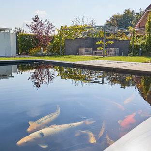 Geräumiger Moderner Garten hinter dem Haus mit Teich, direkter Sonneneinstrahlung und Betonplatten in Dortmund