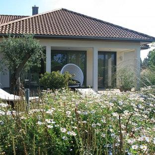 Jardin méditerranéen Hanovre : Photos et idées déco de jardins