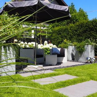 Mittelgroßer Moderner Garten hinter dem Haus mit Kübelpflanzen in Köln