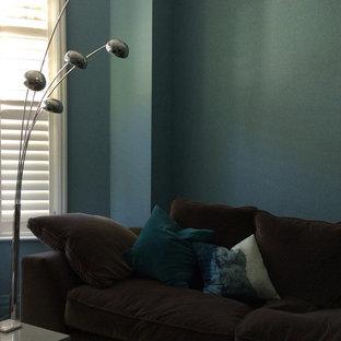 Ejemplo de sala de estar cerrada, contemporánea, pequeña, con paredes azules, suelo de madera en tonos medios y estufa de leña