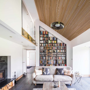 Inspiration For A Scandinavian Open Concept Dark Wood Floor And Brown Floor Living  Room Library Remodel