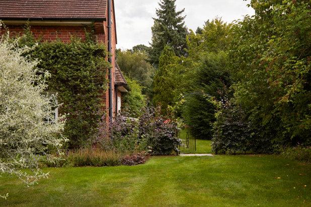 Современный Гараж by Ed Oddy Garden Design