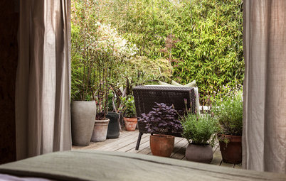 10 Ways to Turn your Urban Garden Into a Dreamy Oasis