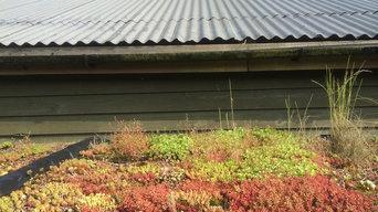 Log Shed roof