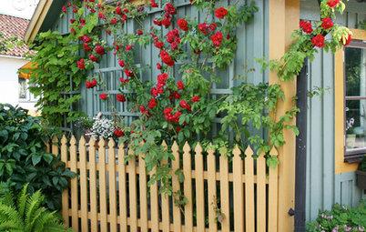 10 idéer från små svenska trädgårdar