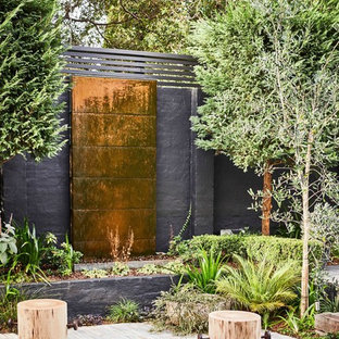 This is an example of a contemporary garden in Sydney.