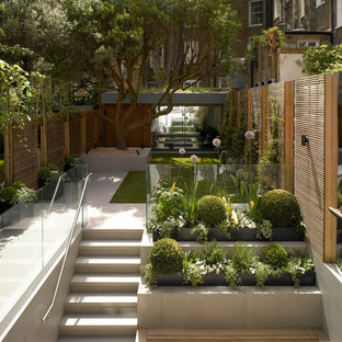 Esempio di un giardino minimal esposto a mezz'ombra con un giardino in vaso e pavimentazioni in cemento
