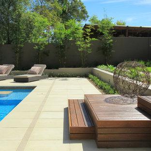 Design ideas for a modern back garden in Sydney.