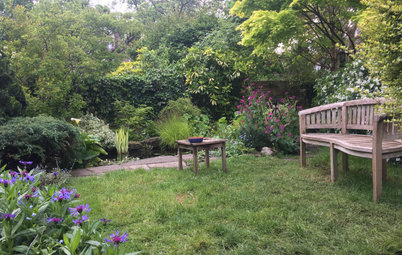 Yard of the Week: Lush Aquatic Garden Welcomes Wildlife