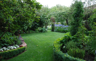How to Tap the Potential of a Big Side Yard