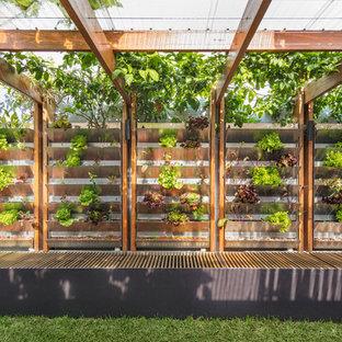 Idéer för en liten bakgård, med en vertikal trädgård och marksten i tegel