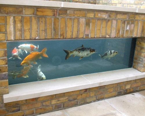 Best outdoor aquarium design ideas remodel pictures houzz for Outdoor aquarium uk