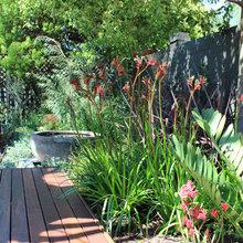 Chirpy Ways to Attract Birds to Your Garden