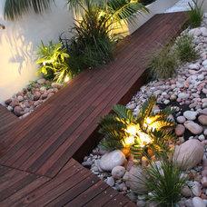 Tropical Landscape by SolScapes