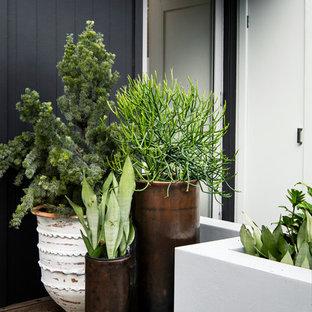 Idée de décoration pour un petit jardin avec une terrasse en bois ou composite arrière ethnique avec un mur de soutènement et une exposition ensoleillée.