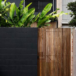 Ispirazione per un piccolo giardino tropicale esposto in pieno sole dietro casa con un muro di contenimento e pedane