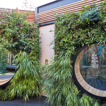 Bamboo & Mirrors