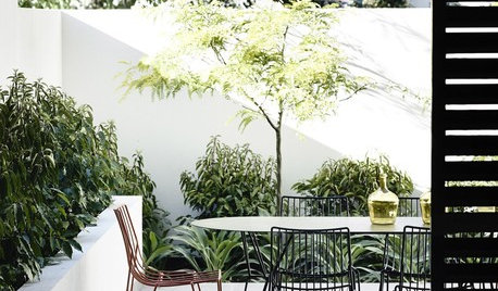 Picture Perfect: 60 Urban Courtyards From Around the Globe