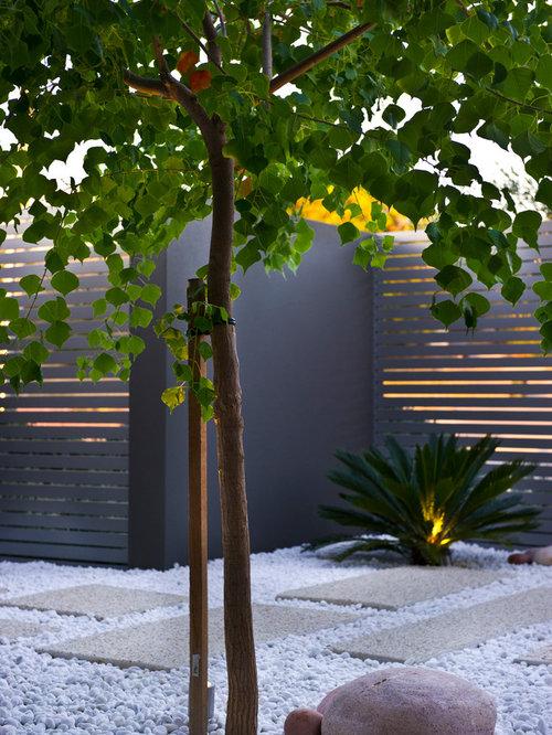 Moderner kleiner vorgarten ideen für die gartengestaltung houzz
