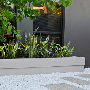 Design ideas for a contemporary full sun front yard gravel landscaping in Perth.