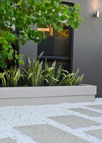 Contemporary Garden by Cultivart Landscape Design