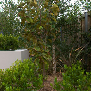 Photo of a small modern partial sun front yard brick landscaping in Sydney for fall.