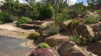 Beautiful Full Garden