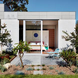 inspiration for a mid sized modern backyard full sun garden in sydney with concrete pavers - Modern Garden