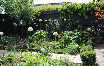 Create a Lovely Wildlife-Friendly Garden in a Yard of Any Size