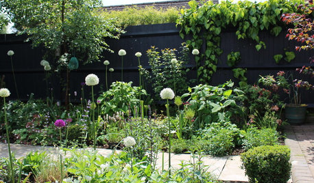 How to Have a Wildlife-friendly Garden That's Also Stylish