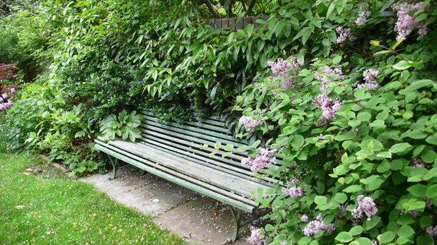 Classique Jardin by London Garden Designer