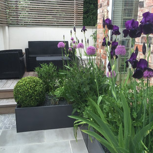 Design ideas for a small contemporary courtyard formal garden in Manchester with a potted garden and natural stone paving.