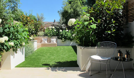 7 Rules for Designing a Small Garden
