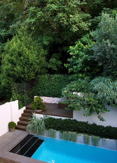 Contemporary Garden by GOODMANORS Pool + Garden