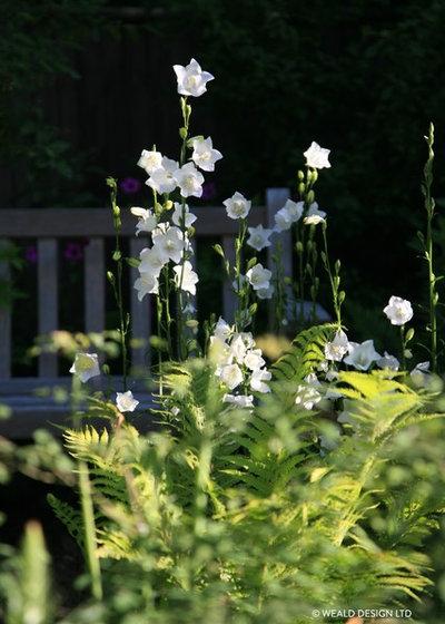 Классический Сад by Weald Design Ltd