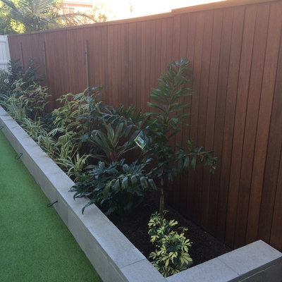 Inspiration for a small contemporary backyard landscaping in Brisbane.