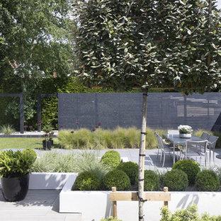 チェシャーの大きいコンテンポラリースタイルのおしゃれな庭の写真