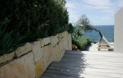 A Gardener's Guide to Coastal Climates