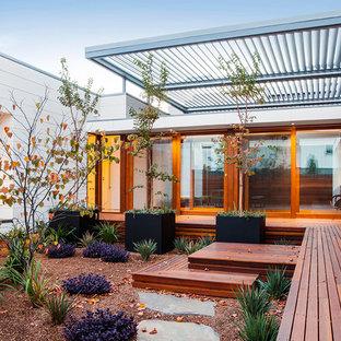 Idéer för att renovera en funkis gårdsplan i full sol som tål torka, med trädäck